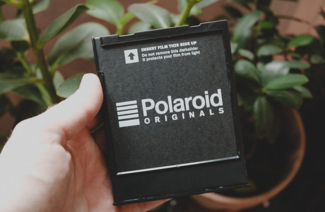 Erfahrungsbericht: Polaroid 600