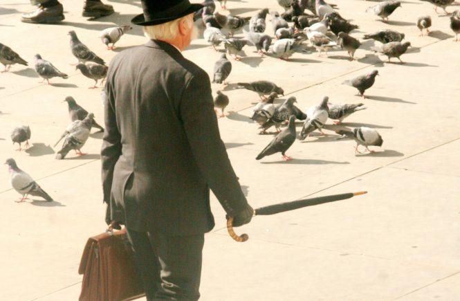 Meine Nachbarin wollte, dass ich Tauben aus ihrer Wohnung vertreibe | KOENIGLICH VERWIRRT #62